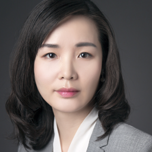 Beijie Tang (Deputy Secretary-General at Center for China and Globalization)