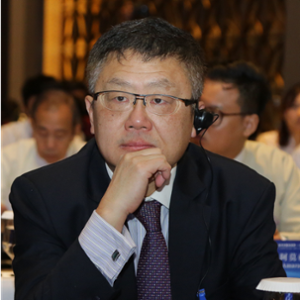 Jing Huang (University Professor at Beijing Language and Culture University)